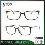 Het nieuwe Optische Frame van Eyewear van het Oogglas van Ultem van het Ontwerp Plastic met Slank Roestvrij staal 7022