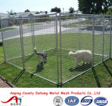 De poeder Met een laag bedekte Looppas van de Hond, de Kooi van de Hond, de Omheining van de Hond voor Verkoop