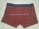 Garn-Farben-roter schwarzer Streifen-Baumwollkind-Unterwäsche-Jungen-Boxer-Kurzschluss-Jungen-Schriftsatz