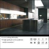 Alto armadio da cucina lucido UV moderno (ZH0256)