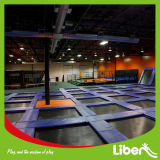 Chevreau Playground Indoor Trampoline Areas à vendre