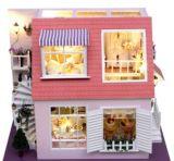 Het Speelgoed van het Huis DIY