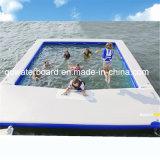 Qualität mit niedriger Preis-Swimmingpool mit Netz