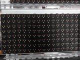 Schermo esterno del TUFFO LED (P16 /P12/P20)