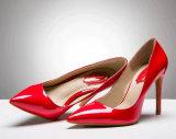 2016 ботинок платья насосов высокой пятки способа классических (HCY02-1751)