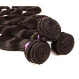 ブラジルのバージンの毛ボディ波ブラジルボディ波3束のバージンの加工されていない人間の毛髪の織り方のブラジルの毛の織り方の束