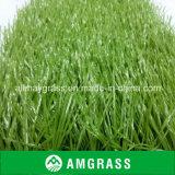 Hierba sintetizada profesional del fútbol/del campo de fútbol (AST-60D)