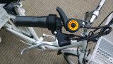 2017 bicicleta eléctrica de la rueda caliente de la venta 3 con las cestas grandes para la anciano