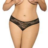 크기 Panty 플러스 섹시한 투명한 레이스 여자