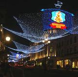 좋은 싼 Ce/RoHS 크리스마스 옥외 훈장 LED 순수한 빛