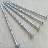 Clavos calientes del material para techos de la pista del paraguas de las ventas (precio de fábrica de China)