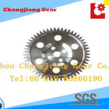Industriale standard ANSI Grande Sprocket Spur ingranaggi con sei fori