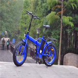 20 '' Folding Fat Tire Ebike pour la plage