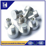 高品質のステップリベットが付いている銀または鋼鉄リベット