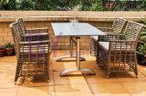Mobilia creativa del rattan del PE del nuovo di stile di svago patio esterno del balcone