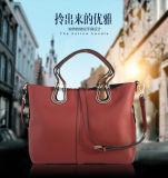 Bw1-009 형식 한국 여자의 어깨에 매는 가방 OEM 숙녀 핸드백