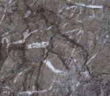 Слябы мрамора пола стены Lido серой серии нового продукта серые