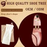 El árbol de encargo al por mayor del zapato, ayudante toma los zapatos del cuidado
