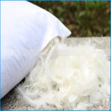 Wholesale hotel Used White duck Goose down Feather Pillow