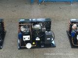 Eenheid van de Compressor van Bitzer de Condenserende Koel
