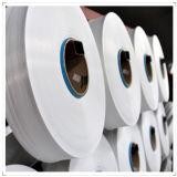 Filato di nylon del HOY strutturato per tessere