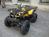 Het Hoogtepunt van de Laagste Prijs van de fabriek - grootte ATV 250cc (jy-200-1A)