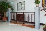 Balustrade en acier galvanisée décorative de haute qualité 5 de balcon d'alliage de Haohan Alluminum