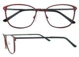 Blocchi per grafici sottili eccellenti popolari degli occhiali di Stainsteel
