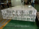 Los paneles de aluminio incombustibles ligeros de la partición del recinto limpio del panal