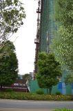 Alzamiento de la maquinaria del edificio de la construcción de la conversión de Sc200/200bdfrequency