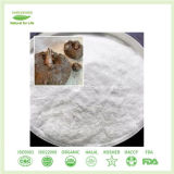 Polvo Konjac de Glucomannan de la harina para los tallarines Konjac/esponja