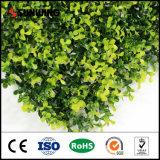 Изгородь PE поставщика Китая материальная искусственная для домашнего декора сада