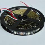5050 indicatore luminoso di striscia di 1903IC SMD Digitahi LED con il regolatore programmabile