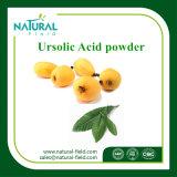 Polvo natural del ácido el 98% de Ursolic de la fuente de la fábrica
