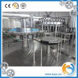 Cadena de producción automática del relleno en caliente máquina de rellenar del jugo de Furit