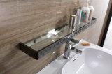 (T-080) 최신 판매 스테인리스 가구 현대 목욕탕 허영 내각