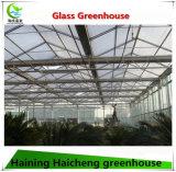 Type de Venlo serre chaude en verre avec la structure Plonger-Chaude de galvanisation à vendre