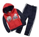 Оптовое Girltracksuit для малышей одевая в костюмах Swg-139 детей