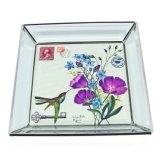 Het Dienblad hx-8054b van de Vertoning van de Halsband van de Juwelen van het Glas van de Manier van de Fabrikant van China