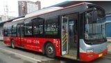 P6 Programmeerbare Tekst die LEIDENE Vertoning voor de Route van de Bus scrollen