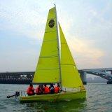 de Zeilboot van Daysailer van de Glasvezel van 48m