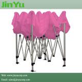 10*10FT Tent van de Markttent van het aluminium de Promotie