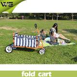 Tikes pequenos da conveniência ao ar livre que dobram o carro de serviço público com rodas