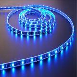 Azul 120Leds / M SMD 2835 tira del LED con altos lúmenes
