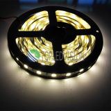 La striscia 5054 SMD del LED non impermeabilizza l'indicatore luminoso flessibile 12V ultra luminoso del nastro del LED