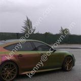 Pigmento del camaleón de la pintura del coche