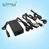 Fuyuang 6A 12/24 Volt Battery Charger for Electric Scooter