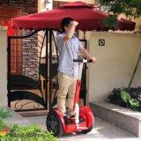 工場価格の自己のバランスの電気手段の移動性のスクーター