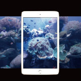 Протектор экрана Tempered стекла края высокого качества ультра ясный изогнутый 2.5D защитный на воздух 2 iPad