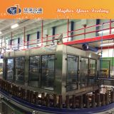 De Apparatuur van de Brouwerij van het Bier van de Fles van het glas